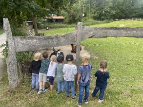 CI KIDS Sommerfest auf dem Lama und Alpakahof