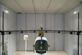 Die Experimente zum Cocktailparty-Effekt wurden in einem schallisolierten Raum durchgeführt. © IfADo/kemmler
