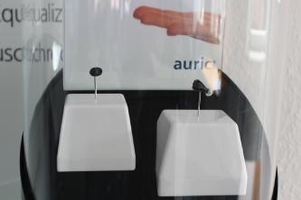 Besuch bei Firma auric_1